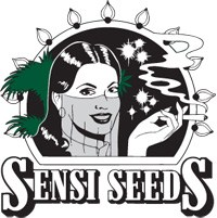 - Sensi Seeds Regulares