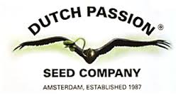 - Dutch Passion Auto