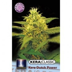 kera_dutch_power_2_1